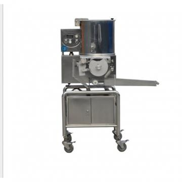 Factory Price Snack Food Fryer/Chickpea Frying Machine/Burger Frying Machine