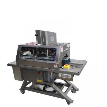 Fish Drying Machine/Banana/Apple/Pineapple Dryer/Dry Food Machine